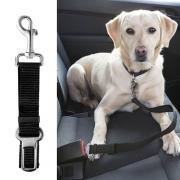Laisse courte ceinture de sécurité pour chien